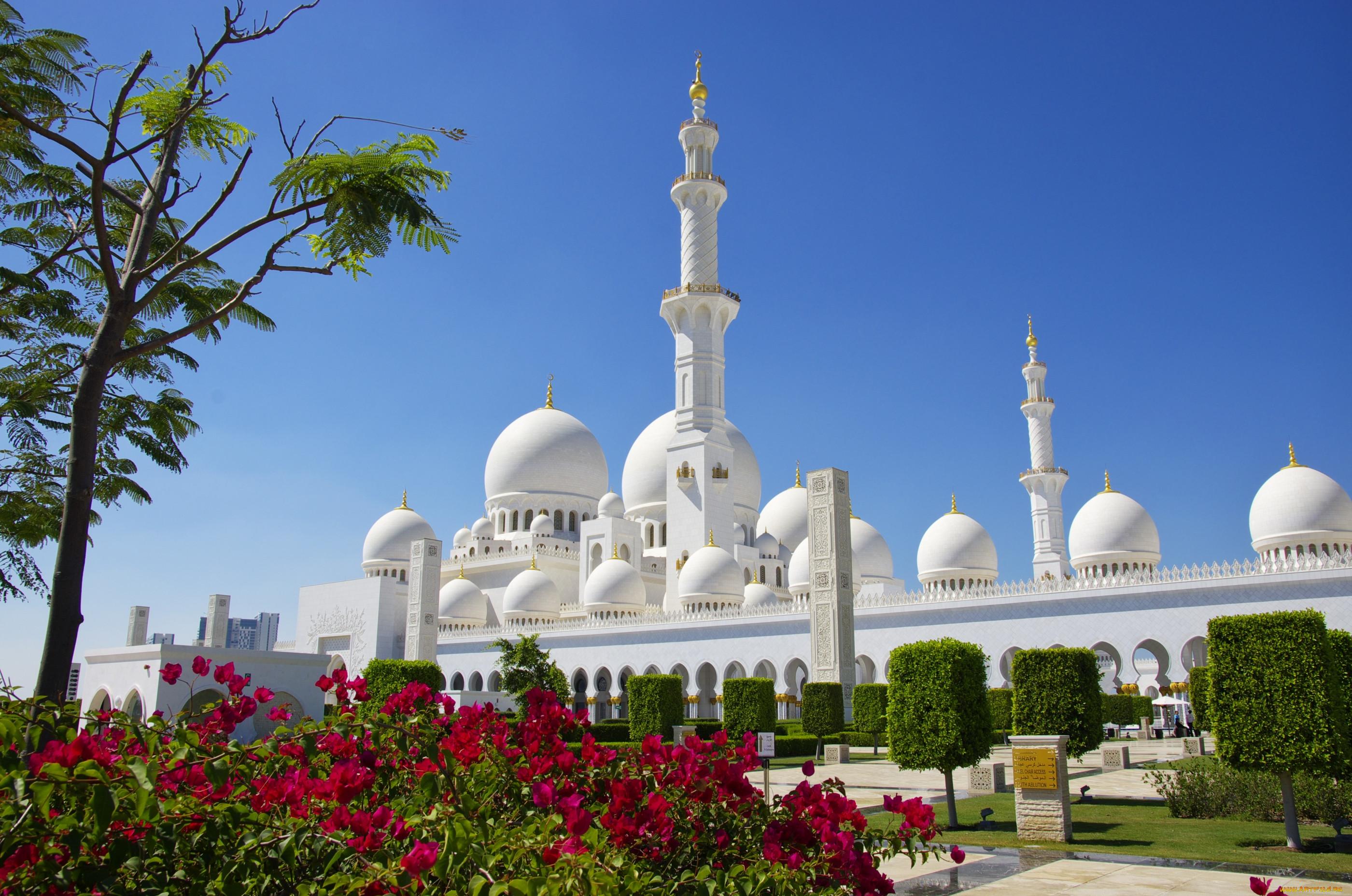 создают, фотографии мечетей мира хорошем качестве всем многообразии моделей